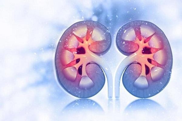 مسائل کلیوی احتمال مرگ بیماران کرونایی را افزایش می دهد