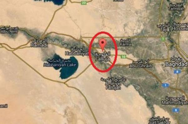 بازداشت سرکرده داعشی در فلوجه